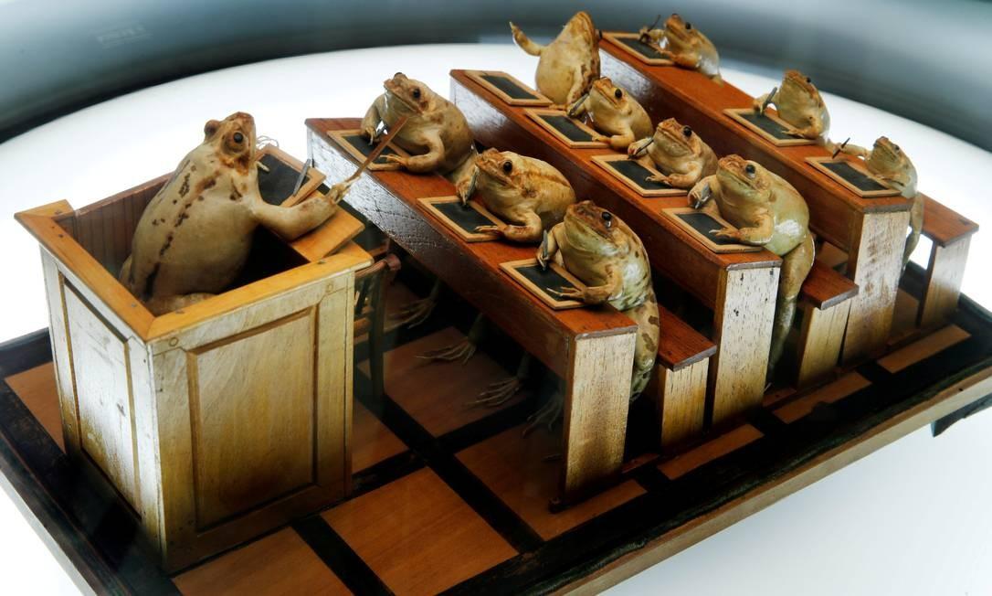 O Exótico Museu do Sapo, na Suíça, tem uma coleção de 108 sapos posicionados de forma a representar eventos do nosso cotidiano. Denis Balibouse / REUTERS