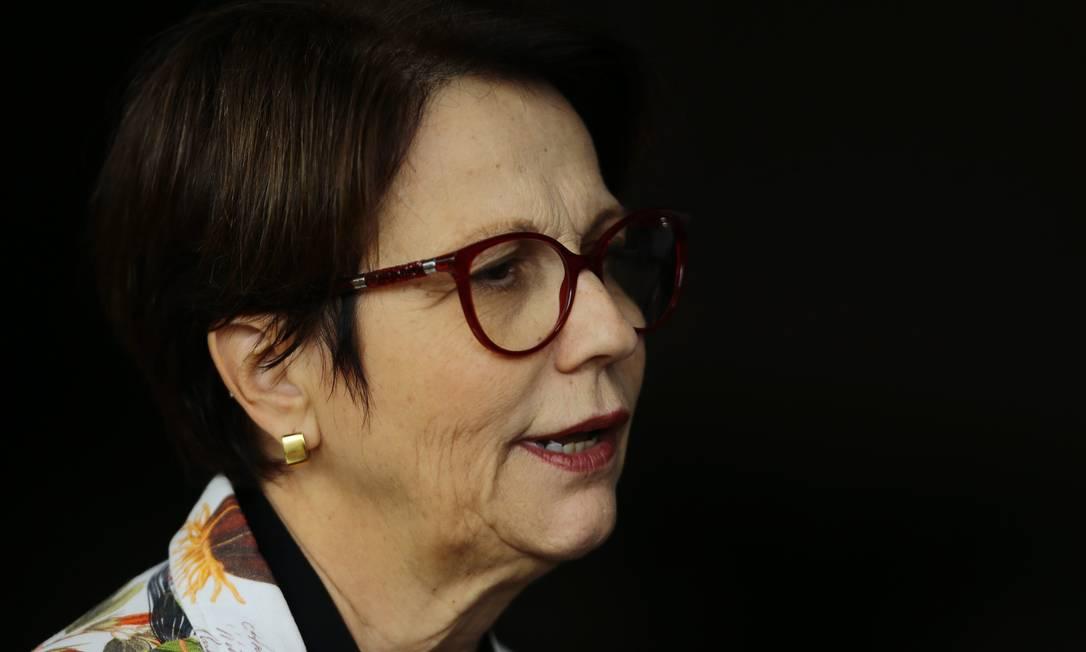 A deputada federal Tereza Cristina, durante entrevista coletiva Foto: Jorge William/Agência O Globo
