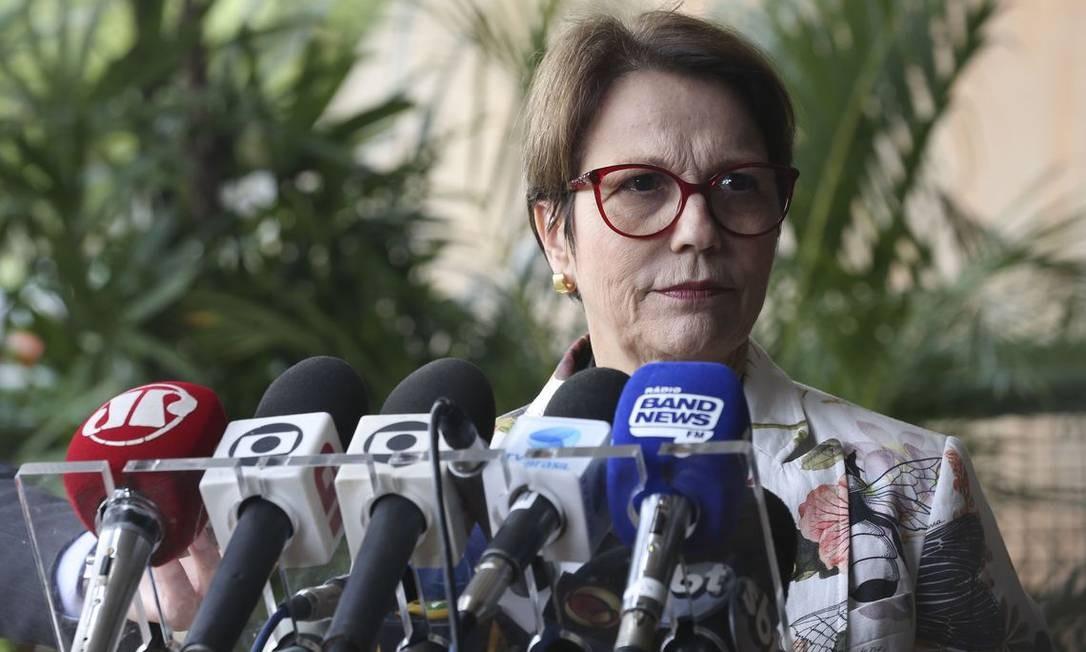 Futura ministra da Agricultura, Tereza Cristina (DEM-MS), diz que flexibilização do uso de agrotóxicos terá 'muito espaço' Foto: Antonio Cruz/ Agência Brasil