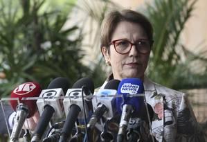 Futura ministra da Agricultura, Tereza Cristina (DEM-MS) Foto: Antonio Cruz/ Agência Brasil
