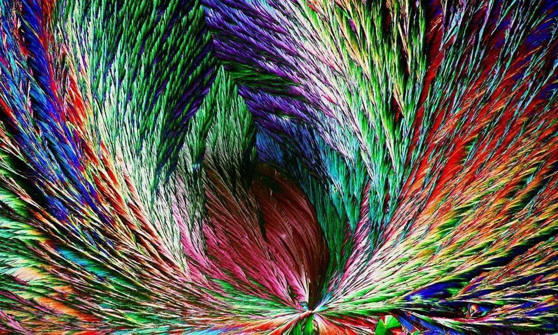 """""""Cristais orgânicos"""", do fotógrafo Henri Koskinen. Biologia Fotógrafo do Ano. """"Ácido cítrico em forma de cristal. Foto: ."""