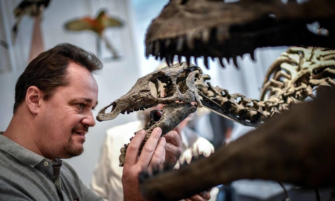Um especialista monta os ossos de um esqueleto do camptossauro em 13 de novembro de 2018, na casa de leilões Artcurial, em Paris Foto: STEPHANE DE SAKUTIN / AFP