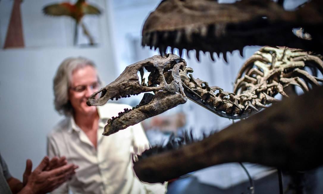Especialistas olham para o esqueleto montado de um camptossauro na casa de leilões Artcurial, em Paris Foto: STEPHANE DE SAKUTIN / AFP