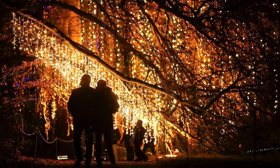 No Jardim Botânico, em Berlim, visitantes caminham entre as árvores iluminadas Foto: FABRIZIO BENSCH / REUTERS