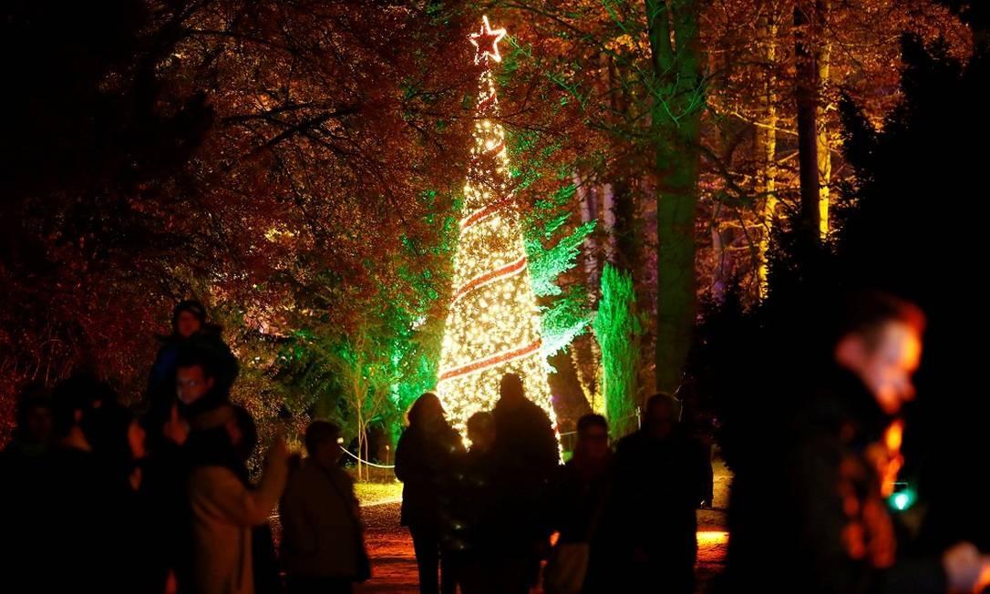 Árvore de Natal no jardim botânico alemão Foto: FABRIZIO BENSCH / REUTERS