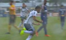 Gustavo Scarpa comemora o empate do Palmeiras, de pênalti, contra o Paraná Foto: Reprodução