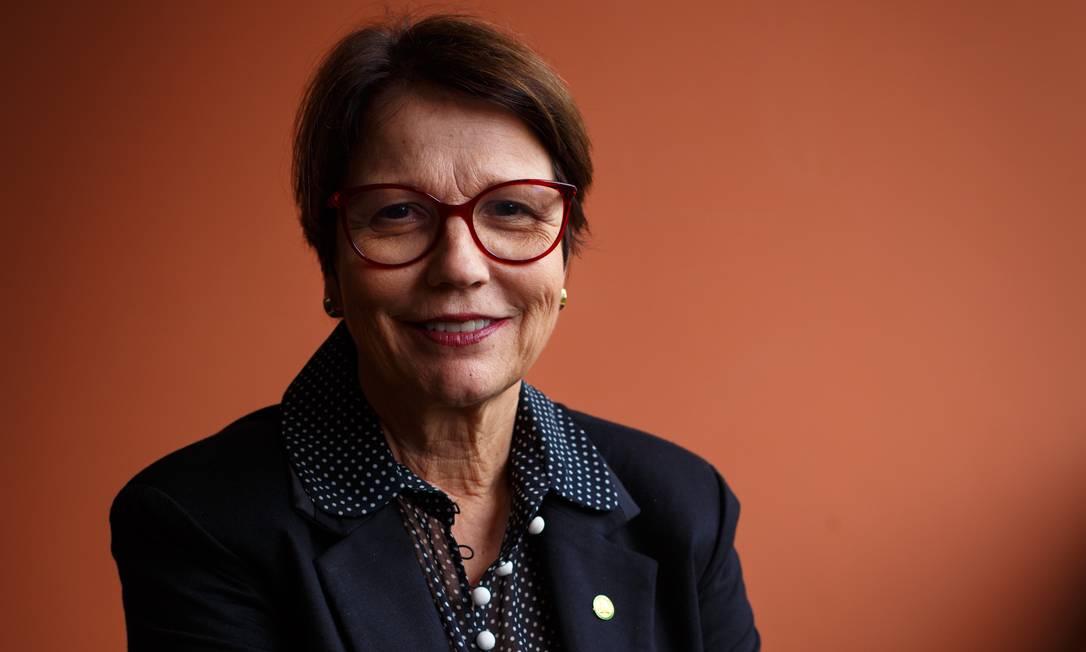 A ministra da Agricultura do governo Bolsonaro, a deputada federal Tereza Cristina (DEM-MS) 20/11/2018 Foto: Daniel Marenco / Agência O Globo