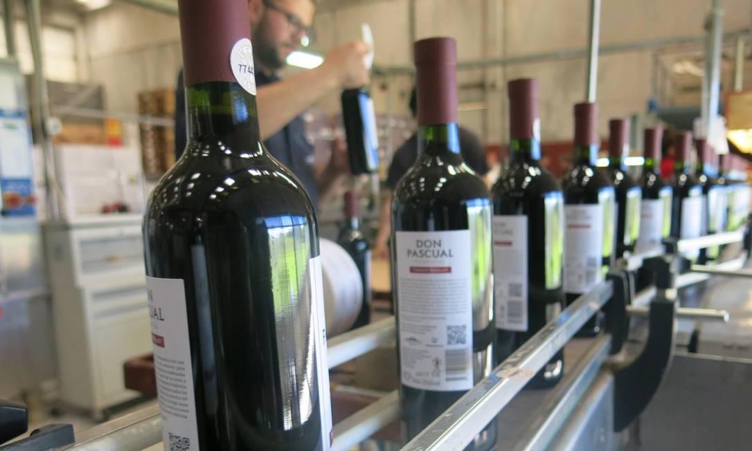 O famoso Don Pascual, vinho produzido pela Juanicó Familia Deicas, em fase de engarrafamento Foto: Elisa Torres / .