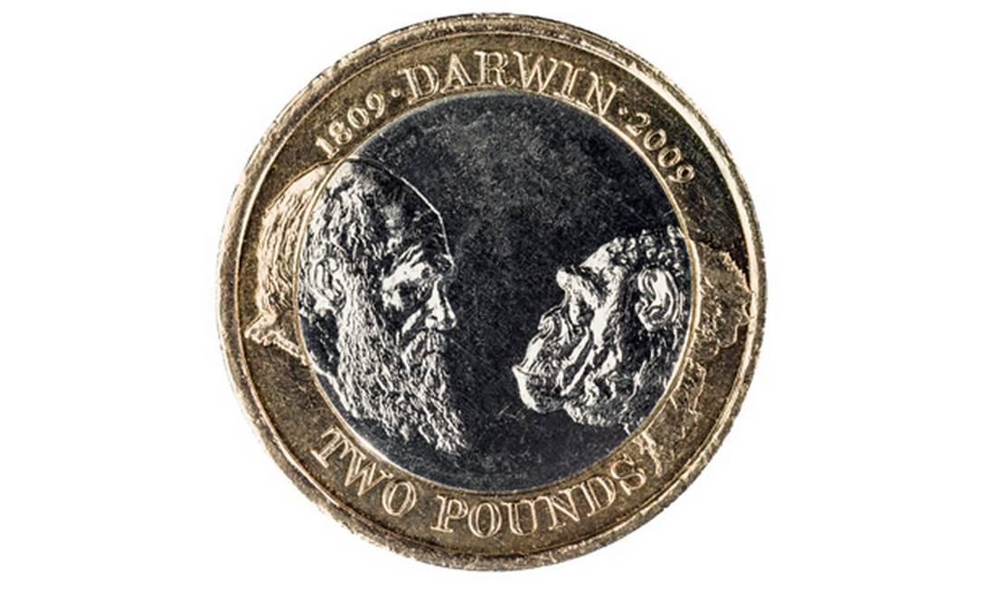 As finanças precisam de Darwin Foto: George Clerk