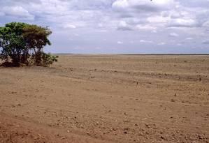 Pelo Cerrado passam 12 bacias hidrográficas do país; apesar disso, desmatamento do bioma cresce quatro vezes mais rápido do que o da Amazônia, e produtores rurais reivindicam ainda mais espaço para cultivos Foto: Latinstock/26-4-2012