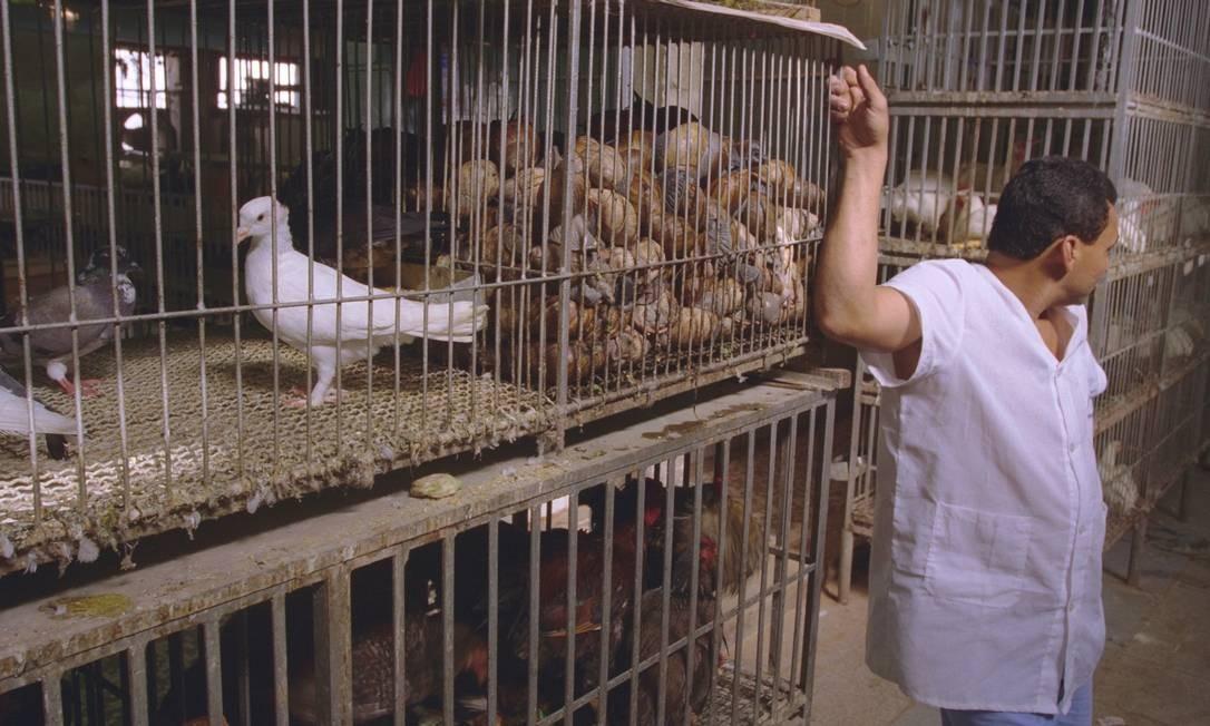 Aves, como pombos e galinhas, eram exibidas em gaiolas para venda no Mercadão em 26/07/1999 Gustavo Stephan / Agência O Globo