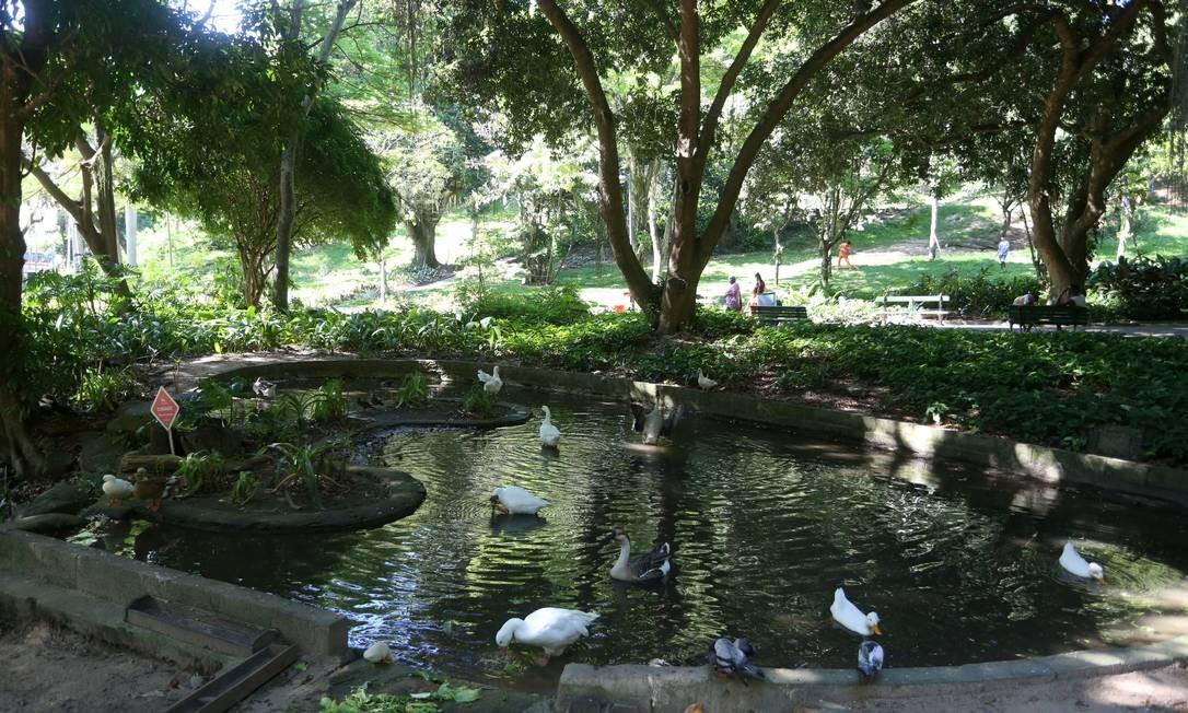 O parque, localizado no fim da Rua Gago Coutinho, abriga um pequeno lago, árvores, brinquedos para crianças, animais e plantas tropicais Fabiano Rocha / Agência O Globo
