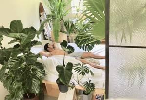 Gabriel cercado por plantas em seu apartamento Foto: Arquivo Pessoal