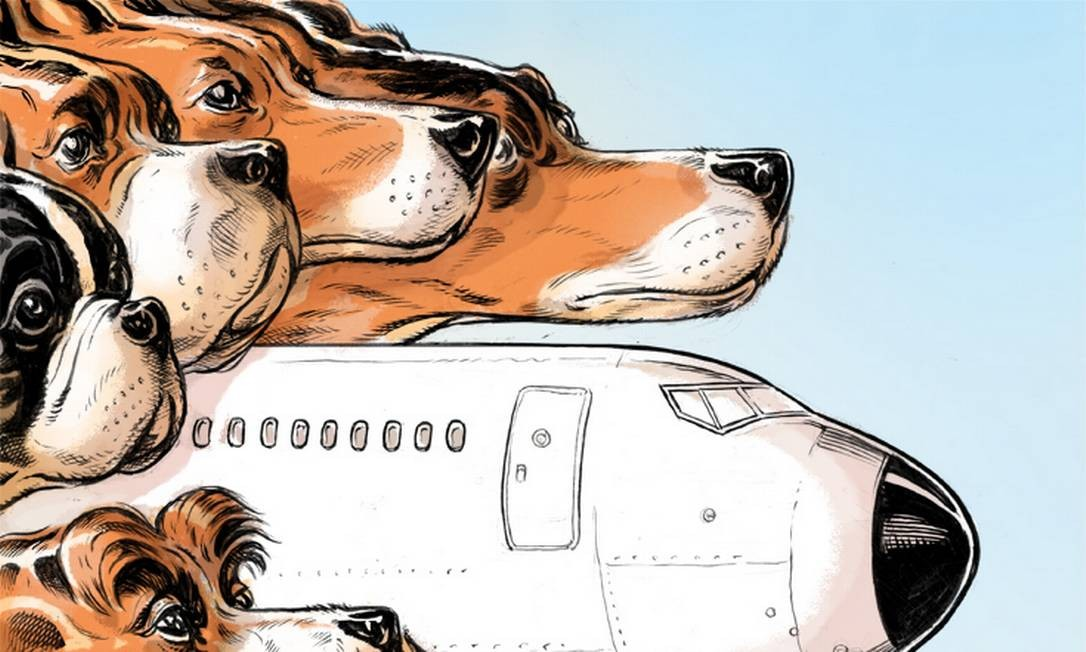 Como viajar com o seu animal de estimação Foto: Lars Leetaru / NYT