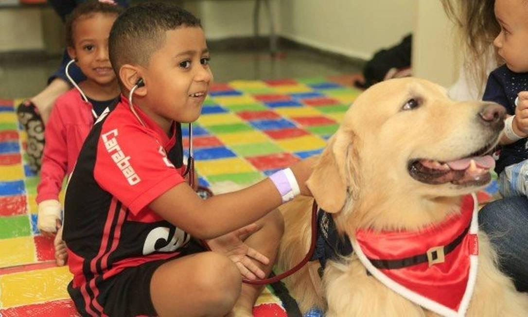 Crianças brincam de cuidar dos animais terapeutas Foto: Roberto Moreyra / Agência O Globo