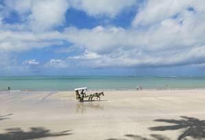 Praia dos Carneiros (PE) Foto: Lucas Altino