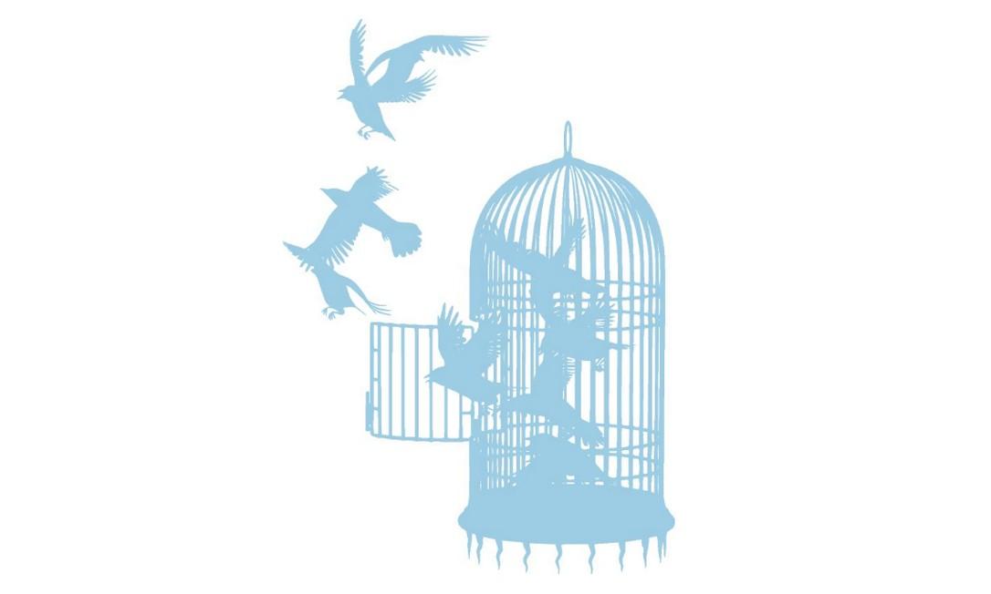 Pássaros saem da gaiola Foto: Agência O Globo