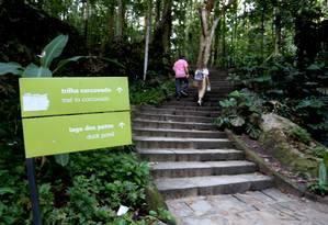 Parque Lage tem trilha que leva ao Corcovado Foto: Marcelo Theobald / Agência O Globo