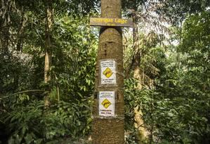 Alerta de assaltos na trilha que liga o Parque Lage ao Cristo Foto: Ana Branco / Agência O Globo