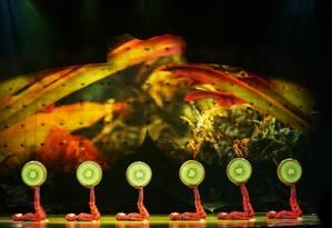 O show inédito do Cirque du Soleil é inspirado no caldeirão cultural brasileiro Foto: Divulgação
