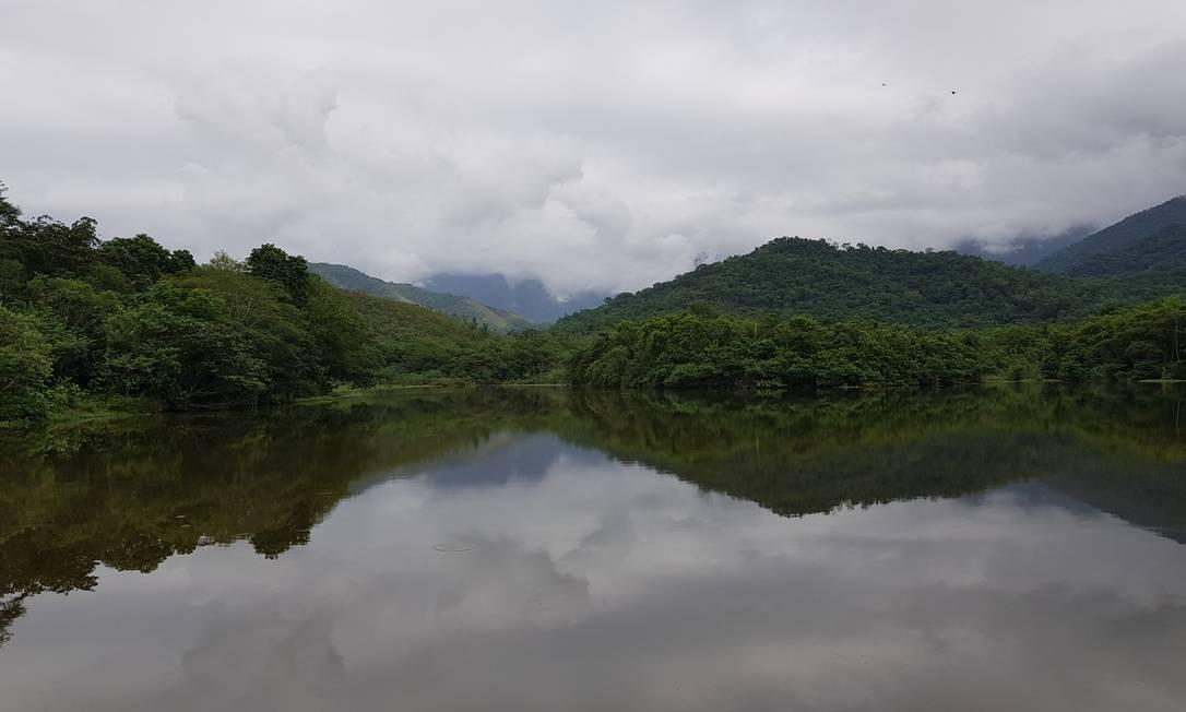 Na paisagem, uma das raras lagoas rasas cercadas pela floresta. Elas eram comuns em todas as áreas baixas da Mata Atlântica, mas foram aterradas e destruídas Foto: Ana Lucia Azevedo