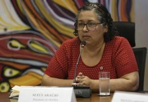 A presidente do Ibama, Suely Araújo Foto: José Cruz / Agência Brasil
