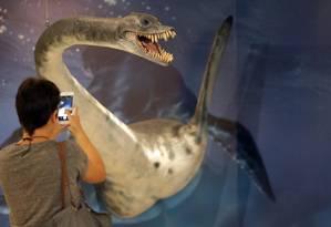 """Museu Nacional inaugura a exposição """"Quando nem tudo era gelo - Novas descobertas no continente Antártico"""", no Centro Cultural Museu Casa da Moeda Foto: Márcio Alves / Agência O Globo"""