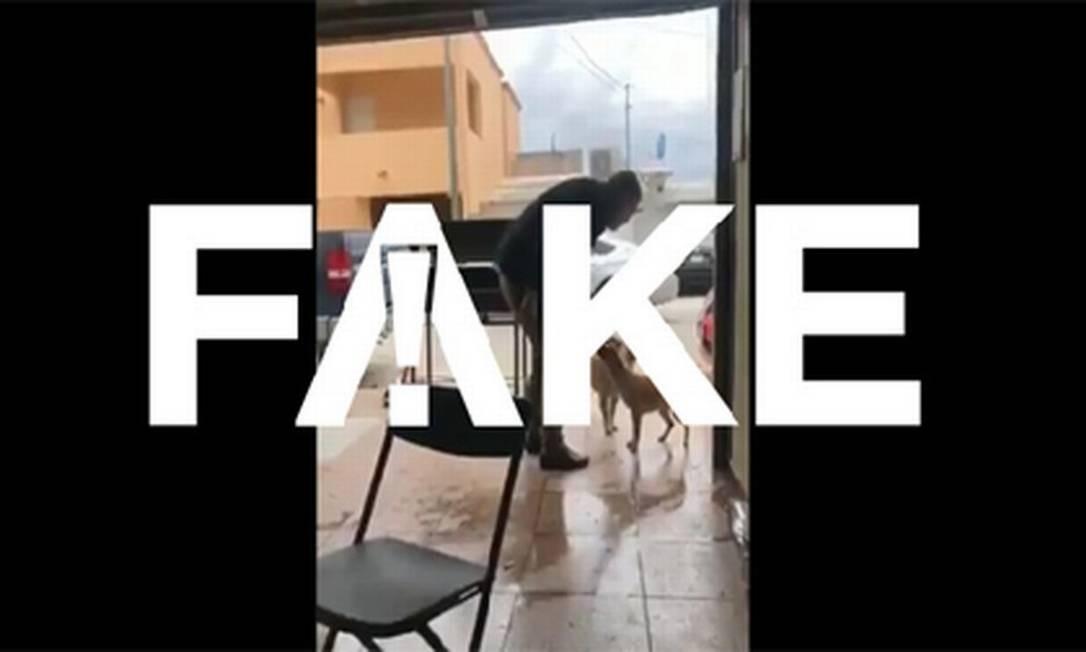 É #FAKE que vídeo em que homem dá facada em cachorro foi gravado no Brasil Foto: Reprodução