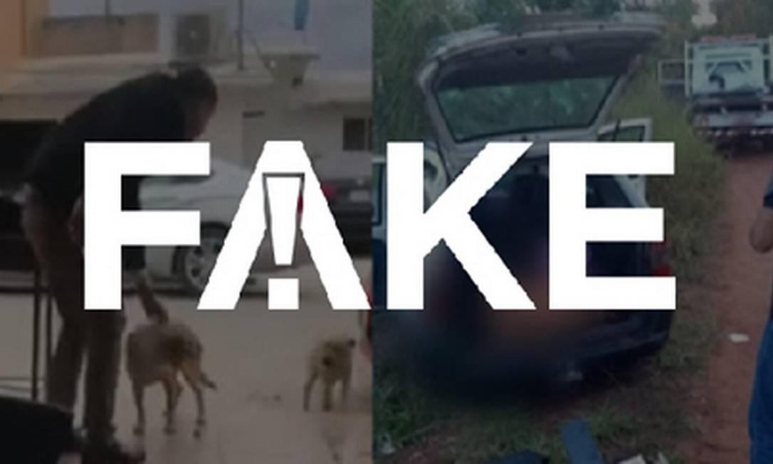 É #FAKE que foto de corpo em porta-malas é de homem que esfaqueou cachorro no México Foto: Reprodução