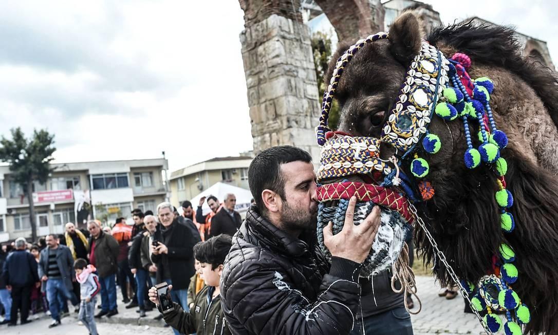 Homem beija camelo durante festival. No primeiro dia, há o concurso de beleza; no segundo, o evento principal: o wrestling, ou seja, a luta Foto: BULENT KILIC / AFP