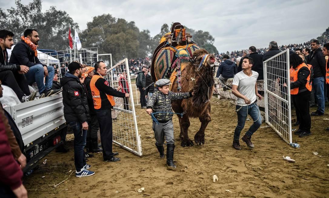 Meninos deixam a arena após camelo vencer o combate Foto: BULENT KILIC / AFP