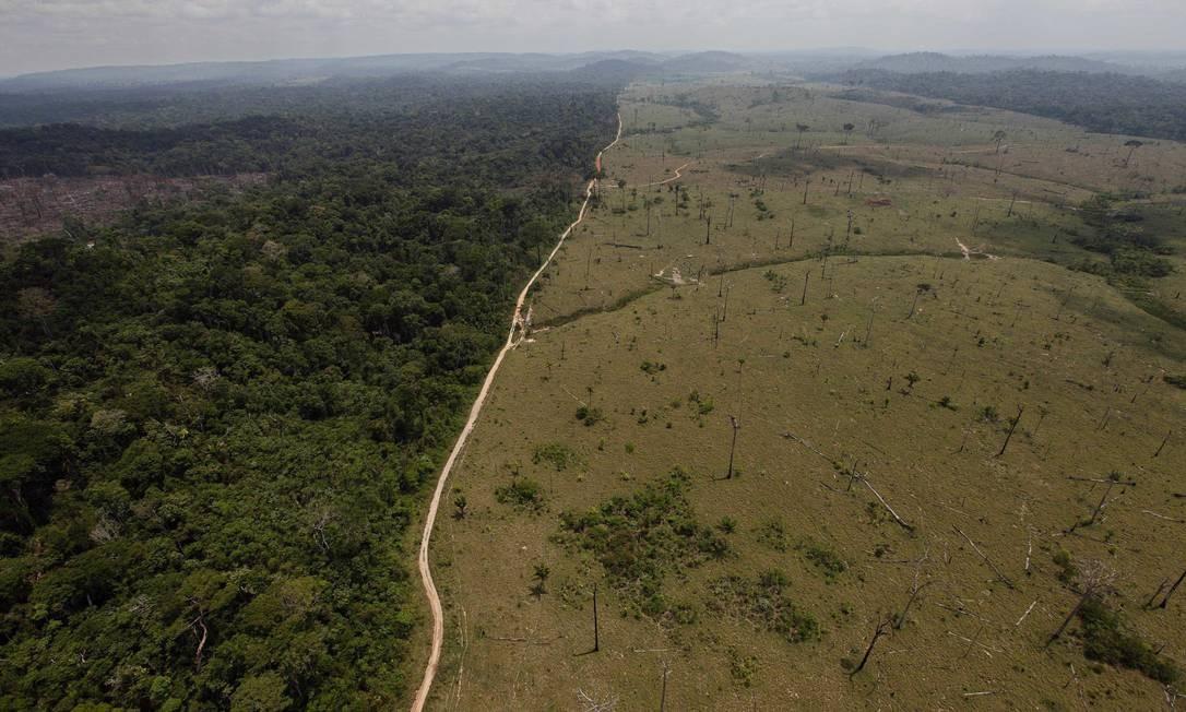 Foto de setembro de 2009 mostra área desmatada no município de Novo Progresso, no Pará, junto a floresta ainda de pé: medidas do novo governo colocam em risco a Amazônia, alerta Artaxo Foto: AP/Andre Penner/15-09-2009
