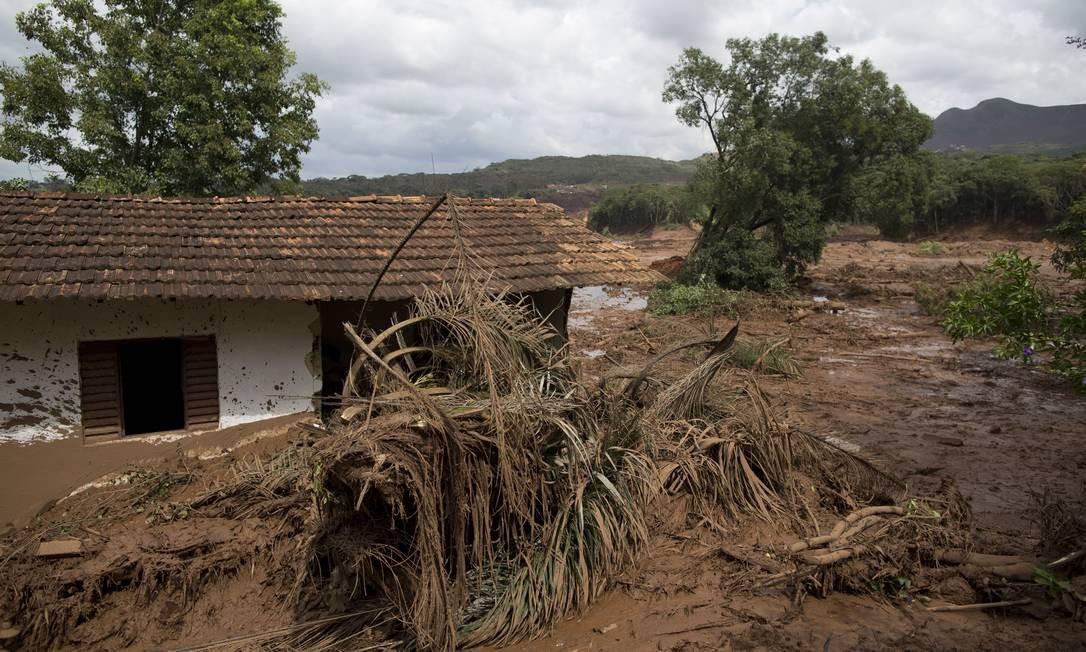Casas atingidas pela lama no distrito de Córrego do Feijão Foto: Márcia Foletto / Agência O Globo