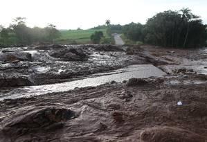 Brumadinho tem danos ambientais em função de desastre ambiental Foto: Marcia Foletto / Marcia Foletto