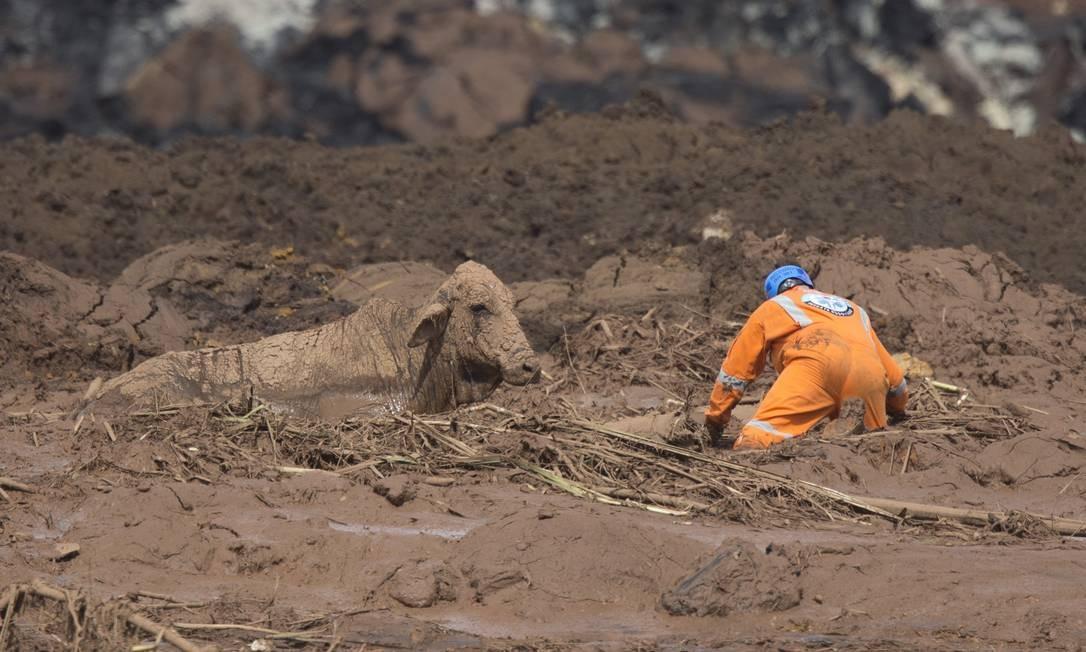 E antes de o resgate terminar, os socorristas precisaram sair do local para não arriscarem a própria vida Márcia Foletto / Agência O Globo