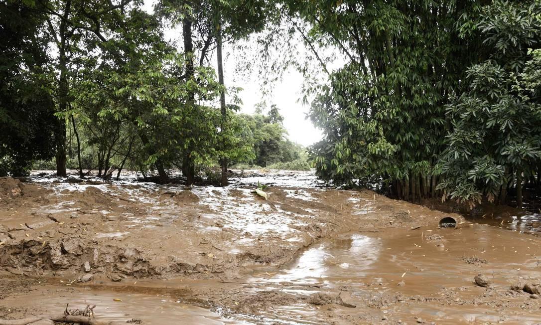 O mar de lama que assolou Brumadinho Foto: Mourao Panda/Ofotografico/Agencia O Globo