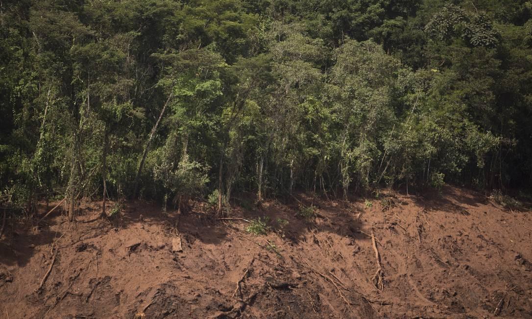Rompimento da barragem da Mina do Feijão, em Brumadinho Foto: Márcia Foletto / Agência O Globo