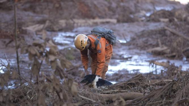 Resultado de imagem para Tragédia de Brumadinho deve ser o maior acidente trabalhista do país