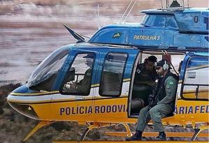 Luisa Mell afirmou que PRF não deveria ter abatido animais a tiros Foto: Instagram/Reprodução