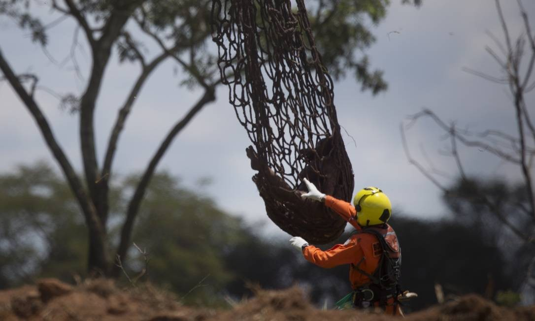 Número de mortos em Brumadinho chegou a 184 Foto: Márcia Foletto / Agência O Globo