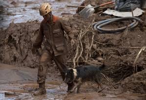 O cão Thor, de 5 anos, tem no currículo larga experiência em resgate, tendo trabalhado nos desatres de Mariana, Herculano e Sardoá. Foto: MAURO PIMENTEL / AFP