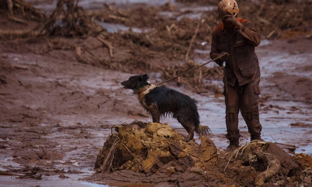 Documento também alertava para a flexibilização do licenciamento ambiental no país Foto: Daniel Marenco / Agência O Globo