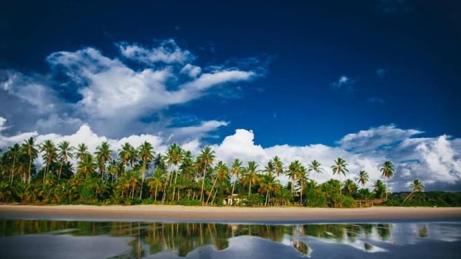 Fazenda em Ilhéus, na Bahia, onde é produzido o óleo de coco Foto: Divulgação