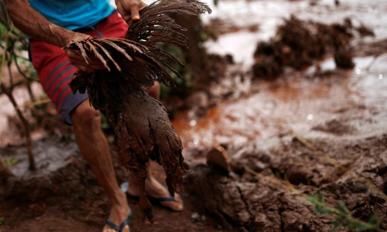 Além de bovinos e de animais de estimação, outros animais ficaram coberto de lama e foram resgatados por moradores e por Bombeiros. Foto: ADRIANO MACHADO / REUTERS
