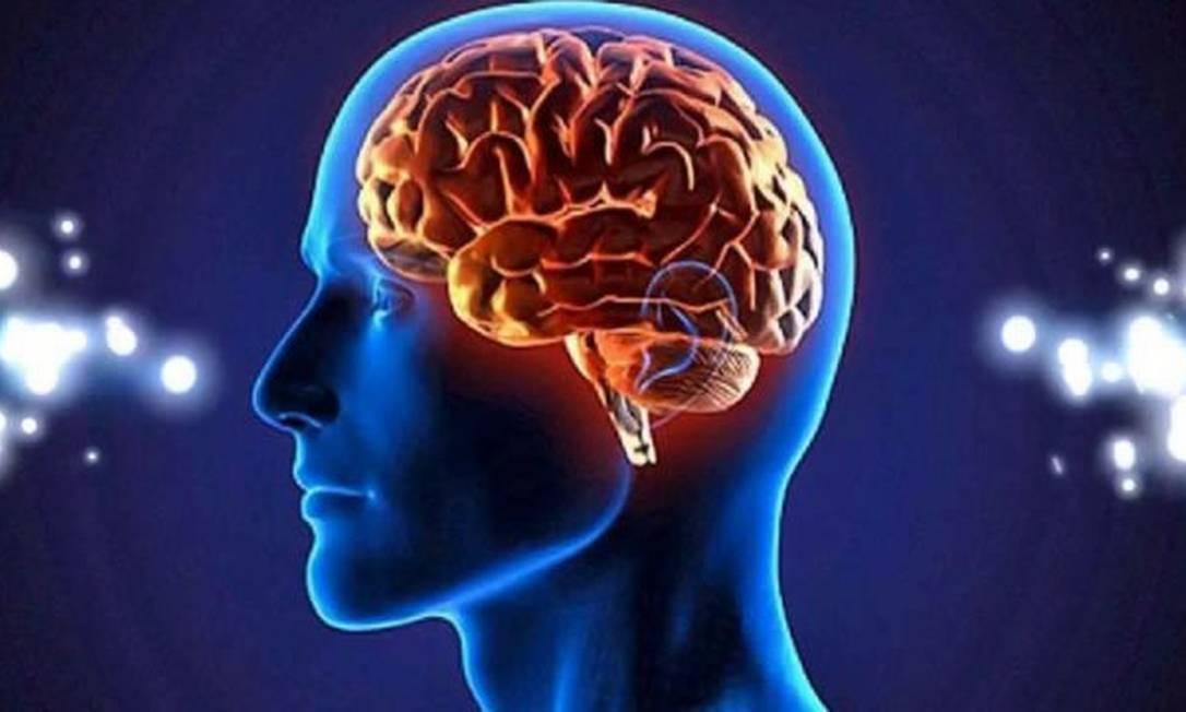 Pesquisa mostra diferença entre cérebros de homens e mulheres Foto: Divulgação