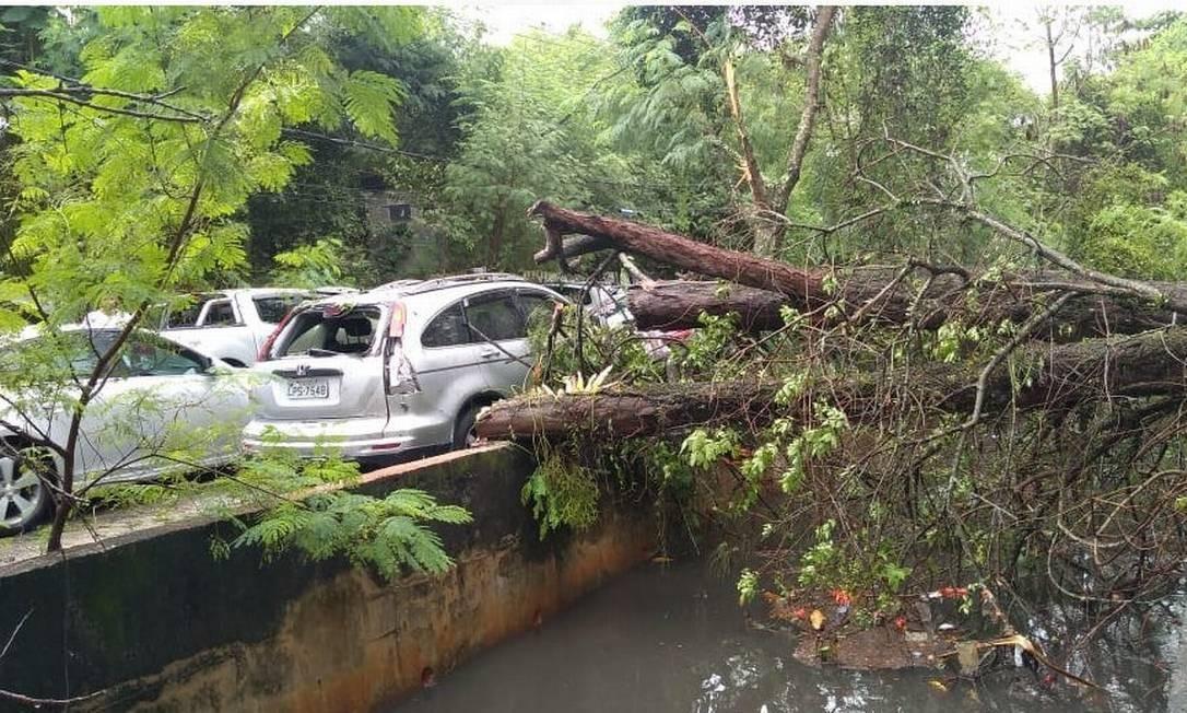 Queda de árvore destruiu carro na avenida Nuta James, na Barra Foto: COR-Rio / Divulgação