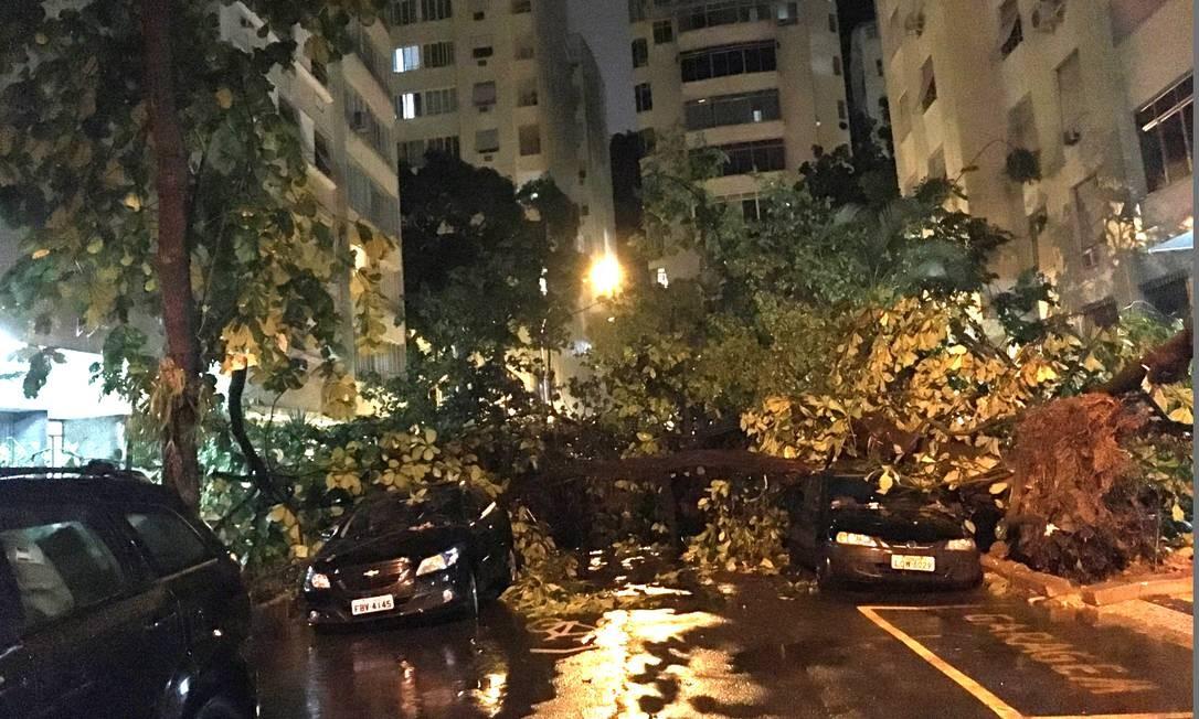 Queda de árvore deixa bloqueada a Rua Hilário de Gouveia, esquina com Tonelero Foto: Alexandre Rodrigues / Agência O Globo