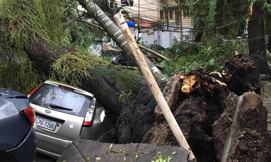 Árvore caiu na Rua Viúva Lacerda, no Humaitá, abriu um cratera no asfalta e atingiu um carro Foto: Do leitor João Lobo