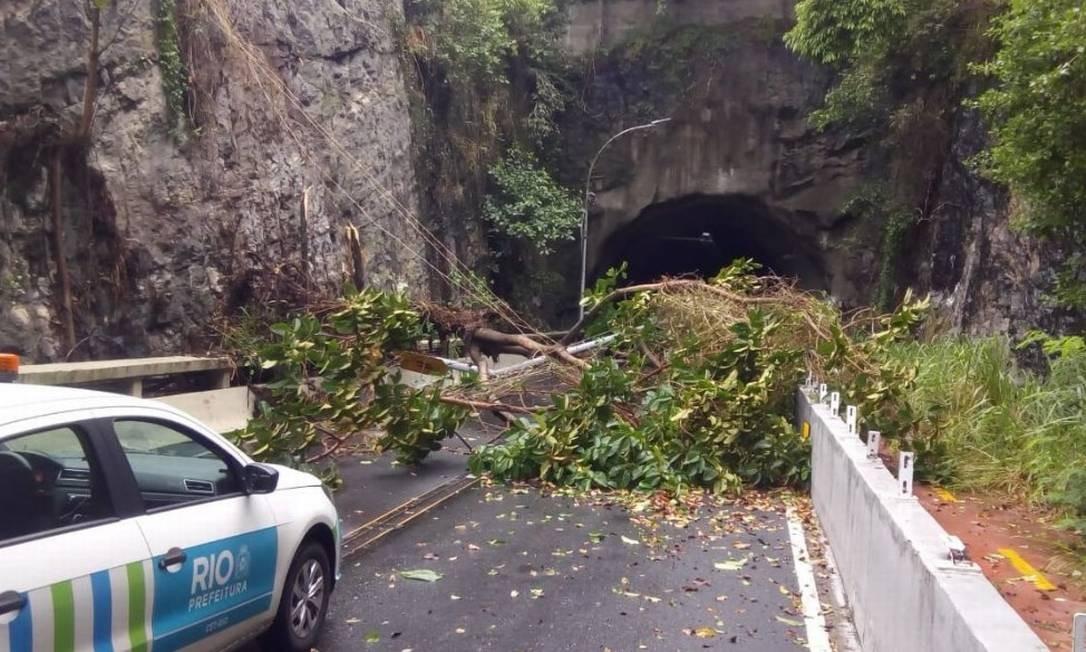 Árvore caída no Elevado das Bandeiras, no Joá Foto: Divulgação/Centro de Operações Rio