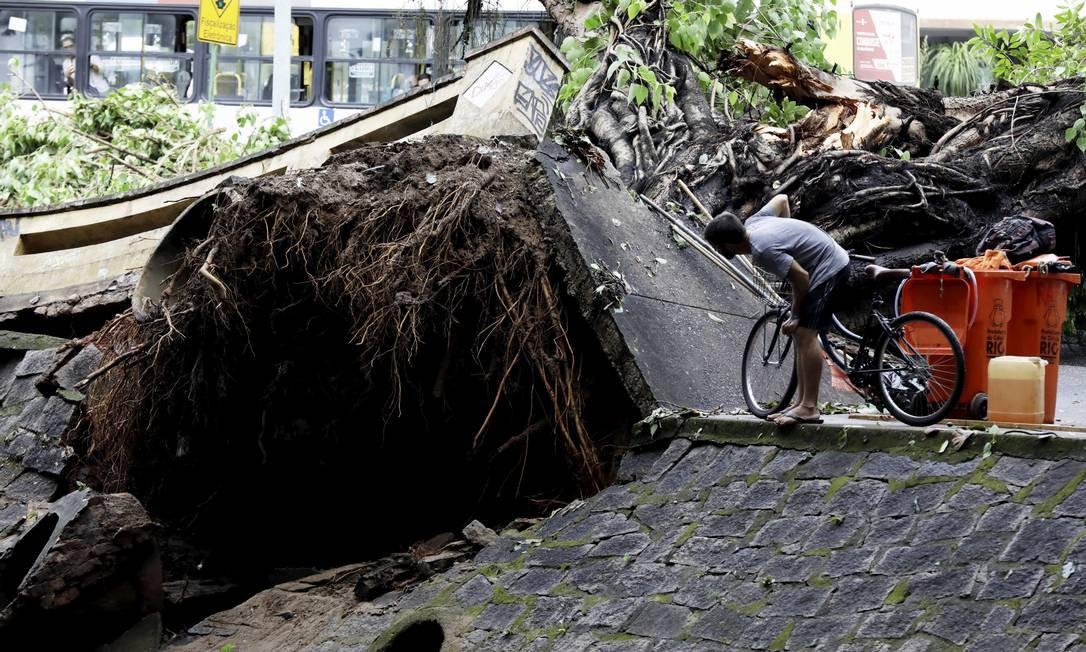 Um ciclista olha para o estrago causado pela queda de uma árvore, na Avenida Visconde de Albuquerque, no Leblon. A raíz chegou a levantar e destruir a passagem pela via Custódio Coimbra / Agência O Globo